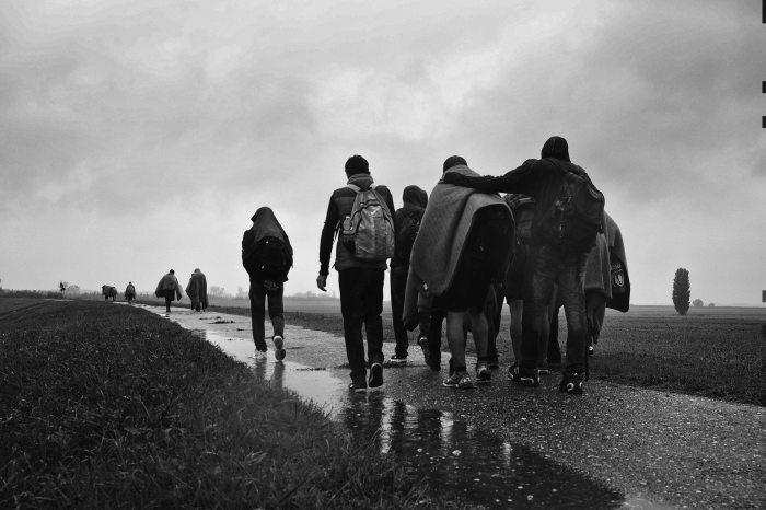 Ph Andreja Restek, refugee