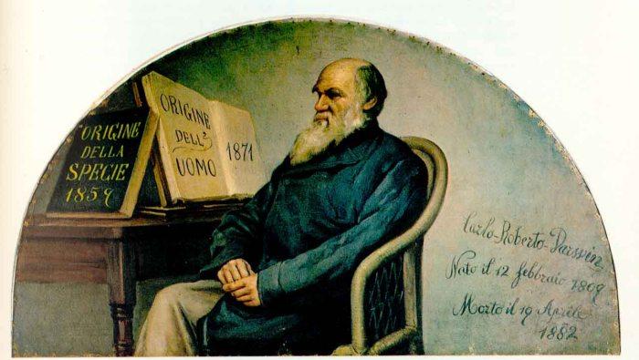 Darwin_panel